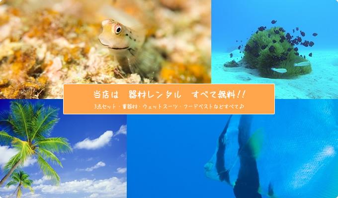 石垣島体験ダイビングは当店へ